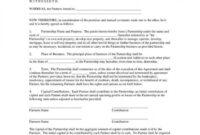 013 Template Ideas Partnership Agreement Pdf Sensational with regard to Business Partnership Contract Template Free