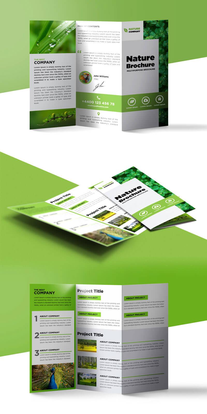 018 Template Ideas Tri Fold Brochure Free Psd Magnificent Throughout 3 Fold Brochure Template Psd