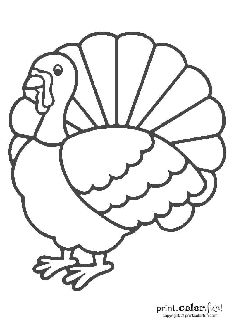 14947 Turkey Free Clipart – 48 Within Blank Turkey Template