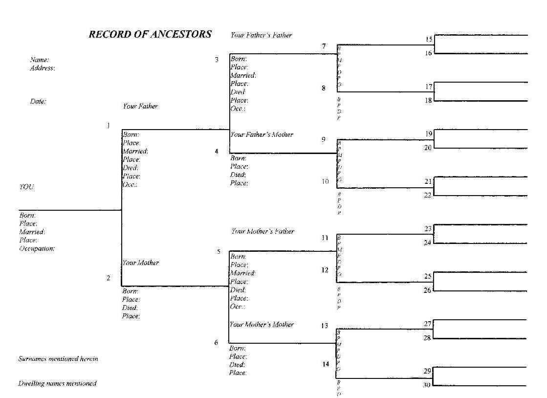28+ [ Blank Family Tree Diagram ] | Sample Blank Family Tree In Blank Tree Diagram Template