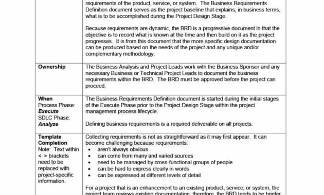 40+ Simple Business Requirements Document Templates ᐅ inside Brd Business Requirements Document Template