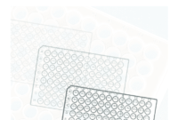 96 Well Plate Template – Fill Online, Printable, Fillable within 96 Well Plate Template