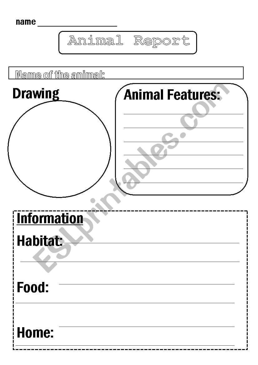 Animal Report Template - Esl Worksheetflora.m123 Within Animal Report Template