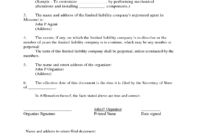 Articles-Of-Organization-Sample-Articles-Of-Incorporation throughout Articles Of Organization Template