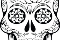 Best Coloring : Free Skull Anatomy Pages Muscular System for Blank Sugar Skull Template