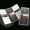 Brochure Vector Contemporary, Picture #1316696 Brochure In Architecture Brochure Templates Free Download