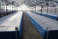 Business Plans Aquaponic Farming Plan Current Projects E2 80 pertaining to Aquaponics Business Plan Templates