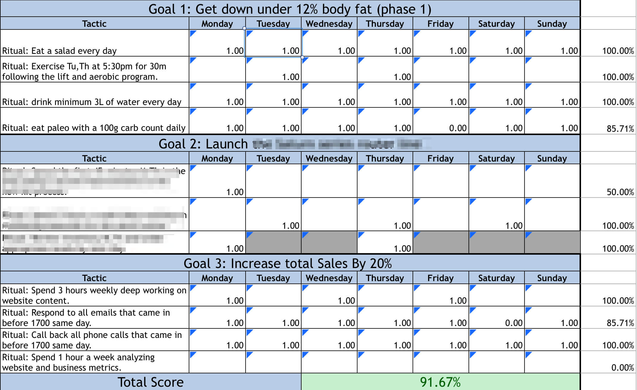 Case Study On The 12 Week Year For 12 Week Year Templates