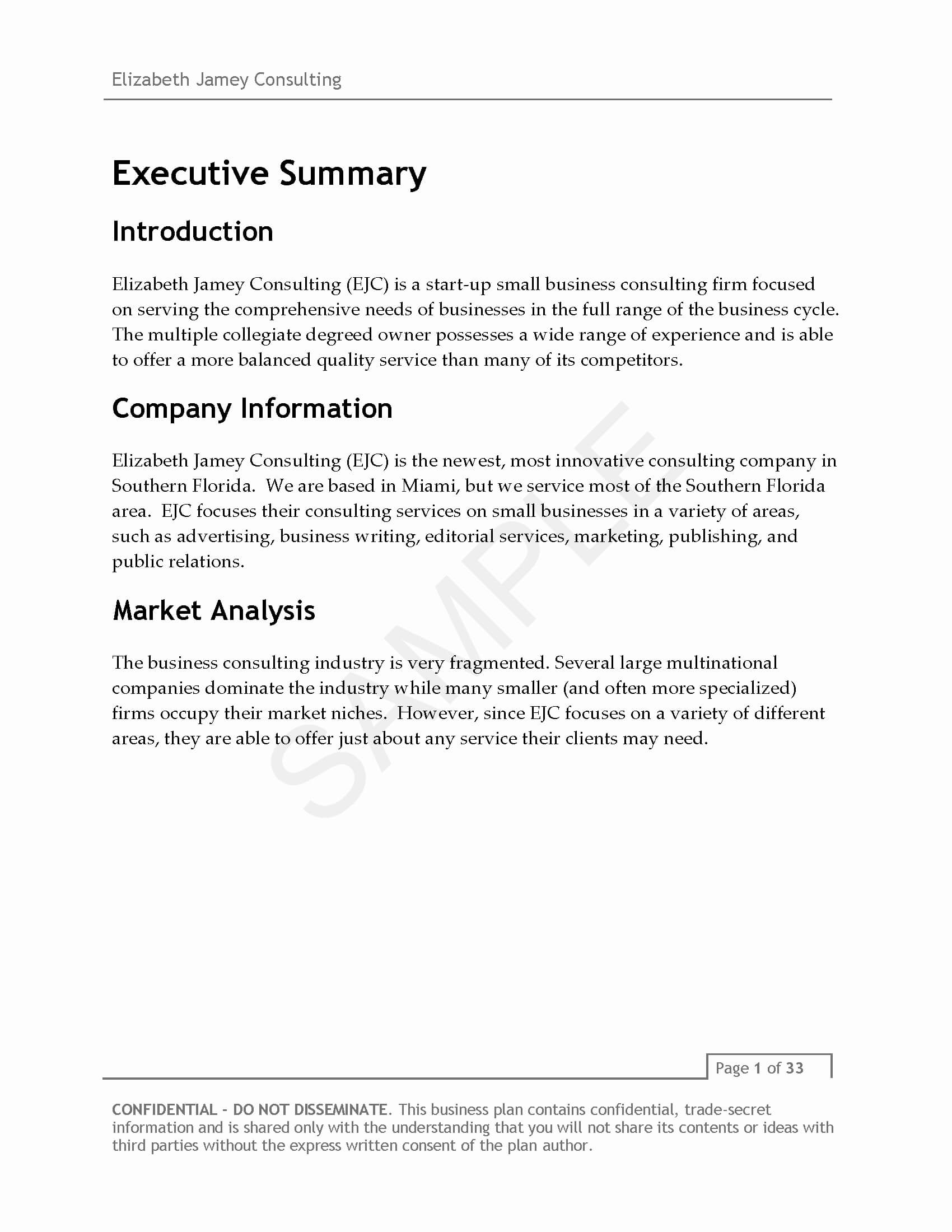 Consulting Company Business Plan Plans Security Sample For With Business Plan Template For Consulting Firm