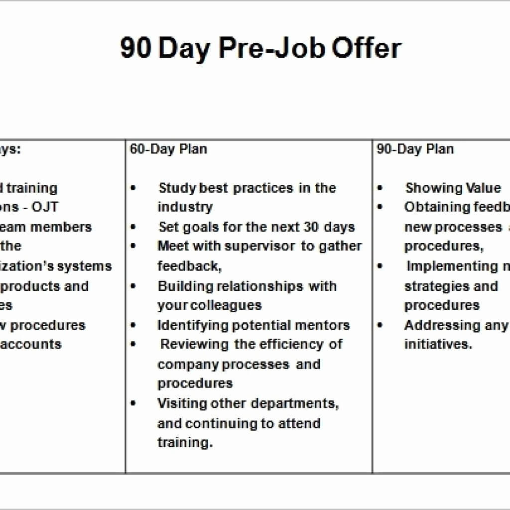 Day Business Plan Template Powerpoint Format For Medical For 90 Day Business Plan Template