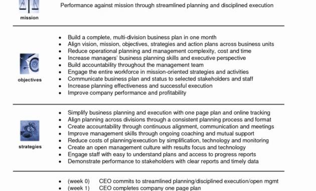 Editable 20 Business Reorganization Plan Template New in Business Reorganization Plan Template