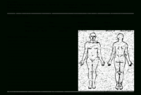 Forensic Drawing Kid, Picture #1086403 Forensic Drawing regarding Autopsy Report Template