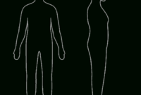 Free Body Outline, Download Free Clip Art, Free Clip Art On within Blank Body Map Template