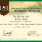 Free Code Camp Full Stack Development Certification Within Boot Camp Certificate Template