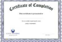 Training Completion Certificate Sample – Tunu.redmini.co with regard to Certificate Of Participation Template Doc